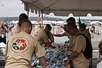 Marine Corps Air Station Cherry Point Air Show 120505-M-KA277-077.jpg