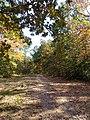 Marion County, AL, USA - panoramio (45).jpg