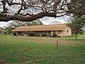 Maui-Puunene-School-old-wooden-building.JPG