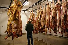 Meat hanging in cooler room-01.jpg