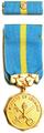Medaile Vězeňské služby České republiky (VS ČR).png