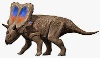 Mercuriceratops NT small