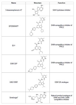 EZH2 - Image: Methyltransferase EZH2 Inhibitor Chart