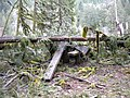 Middle Fork Campground Storm Damage-101, Willamette National Forest (34047920394).jpg