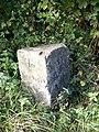 Milestone, Barford St Martin - geograph.org.uk - 1551324.jpg