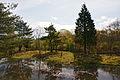 Mineyama Highland in Kamikawa Hyogo pref05n4272.jpg