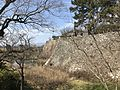 Moat of Kurume Castle 3.jpg