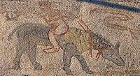 A Roman mosaic in Volubilis