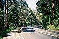 Mount Dandenong Tourist Road (24784920627).jpg