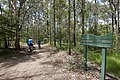 Mt Coot-tha Forest (6971550344).jpg