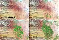 NASA Sees Fields of Green Spring up in Saudi Arabia (7027523783).jpg