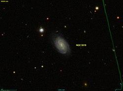 NGC 3019 SDSS.jpg