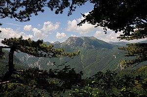 NP001 nacionalni park sutjeska perucica.jpg