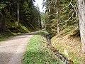 NSG Glaswiesen und Glaswald 04.jpg