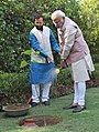 Narendra Modi planting a Kadamb sapling (Neolamarckia Cadamba), at the Race Course Road lawns, to mark the occasion of the World Environment Day, in New Delhi. The Minister of State for Environment (3).jpg