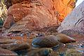 Natural Bridges National Monument, Utah.jpg
