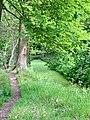 Naturschutzgebiet Boberger Niederung im Mai.jpg