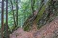 Naturschutzgebiet Feldberg (Black Forest) - Alpiner Steig am Feldberg - Bild 010.jpg