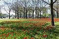 Natuur Breda P1360728.jpg