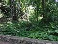 Naumkeag - Stockbridge MA (7710469508).jpg