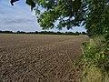 New England field edge - geograph.org.uk - 963266.jpg