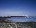 New England harbor scene LCCN2011631804.tif