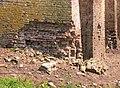 Nijenbeek, juli 2014 (3).jpg