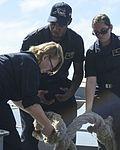 Nimitz pulls into San Diego 161010-N-DA275-025.jpg