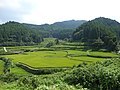 Nishinotani rice terraces Fuji Saga.jpg