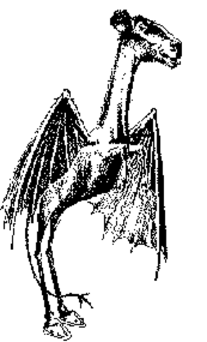 History of the New Jersey Devils - The Jersey Devil, the inspiration for the team's name.