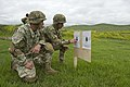 Noble Partner combined weapons range 150514-A-UG934-426.jpg
