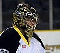 Nolan Schaefer Providence Bruins.jpg