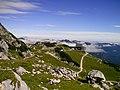 Nordwandsteig, Blick auf die Alpspitzbahn Bergstation - panoramio.jpg