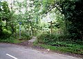 North Downs Way near A22 - geograph.org.uk - 44833.jpg