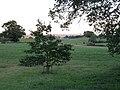 Oakhurst, Oswestry - geograph.org.uk - 506764.jpg