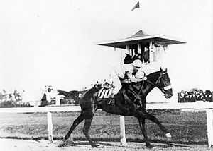 1914 Kentucky Derby - Old Rosebud winning the 1914 Kentucky Derby