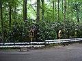 Oostakker - Mariagrot Oostakker-Lourdes 2.jpg