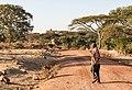 Oromia IMG 5213 Ethiopia (27855625829).jpg