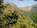 Paisagem a norte da Ribeira Brava (86123200).jpg