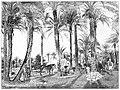 Palmenentuin te Fahradi.jpg