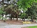 Parco Monticello - Spotorno.jpg
