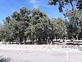 Parque del rio1.jpg