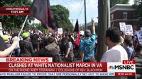 File:Pastor Pulled To Safety At Charlottesville White Nationalists March - AM Joy - MSNBC.webm