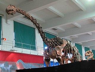 <i>Patagosaurus</i>
