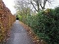 Pathway, Johnston Park, Omagh - geograph.org.uk - 1044713.jpg