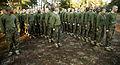 Photo Gallery, Marine recruits fight with pugil sticks, bayonet training on Parris Island 141215-M-FS592-018.jpg