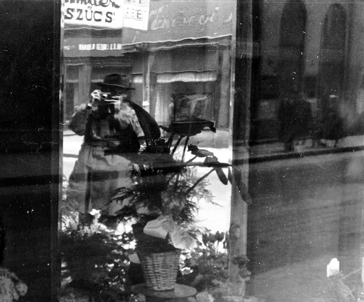 File:Photography, sign-board, flower, Show window, self-portrait Fortepan 3111.jpg
