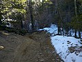 Pickle's Gulch Trail - panoramio (3).jpg