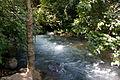 PikiWiki Israel 42229 Banias River.jpg