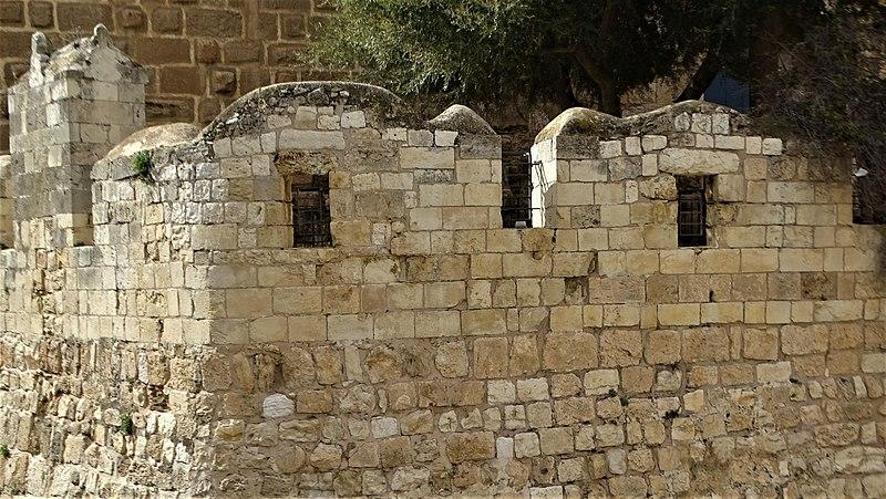 מגדל דוד